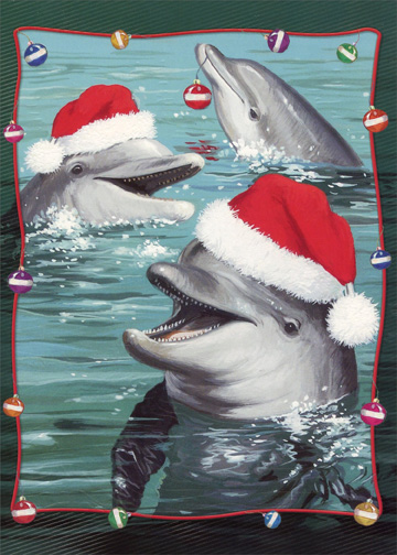 Dolphins With Santa Hats Warm Weather Christmas Card By