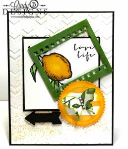 Paper Craft Crew Card Sketch #125 design team submission by Cindy Coutts. #stampinup #cindycoutts