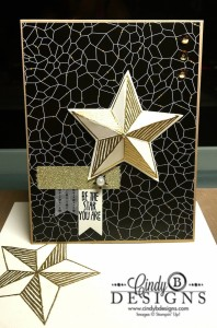 Paper Craft Crew Card Sketch #158 design team submission by Cindy Coutts. #stampinup #cindycoutts