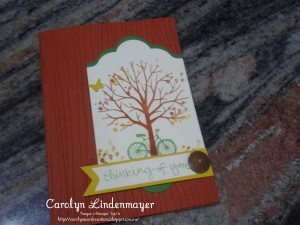 Paper Craft Crew Challenge #167 design team submission by Carolyn Lindenmayer. #stampinup #carolinelindenmayer
