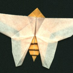Origami Hummingbird Diagram Instructions Chevy 4 Wire Alternator Wiring Diagrams Butterfly By Collin Weber