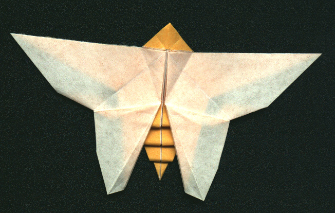 origami hummingbird diagram instructions c5 corvette wiring diagrams butterfly by collin weber