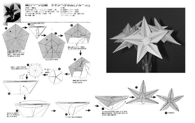 Origami star flower diagram electrical work wiring diagram origami star flower video tutorial paper kawaii rh paperkawaii com make flowers origami instruction easy origami mightylinksfo
