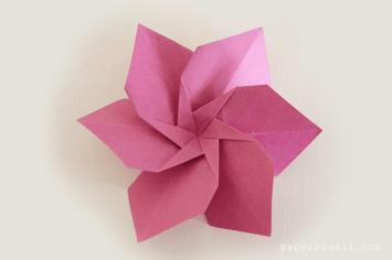 origami-flower-lafosse-alexander-book-02