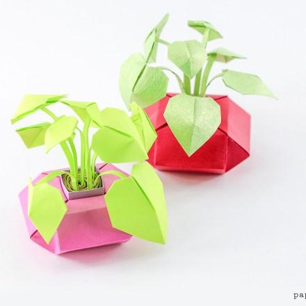 Mini Origami Pot Plants Tutorial - Make Paper Houseplants via @paper_kawaii