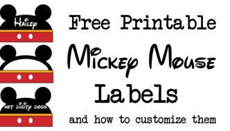 Mickey Mouse Labels Free Printable