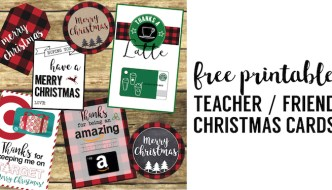 Best Teacher Christmas Gift Ideas