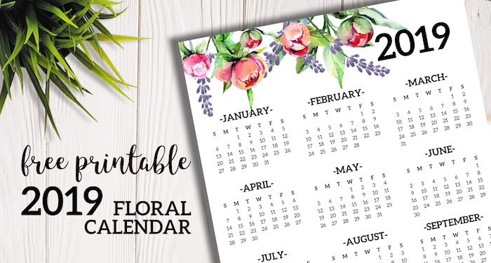 Free Printable 2019 Calendar Yearly One Page Floral