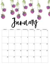 January Free Printable Calendar 2020 - Floral. Watercolor Flower design style calendar. Monthly calendar pages. Cute office or desk organization. #papertraildesign #calendar #floralcalendar #2020 #2020calendar #floral2020calendar