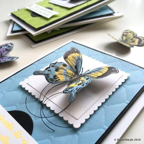 Stampin'Up! Sale-a-Bration 2019, Designerpapier Schmetterlingsvielfalt, Textured Impressions Prägeform Steppmuster, Karten selber basteln