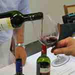 terroir vino