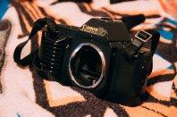 Canon EOS Rebel T6i + EF-S 15-85mm f/3.5-5.6 IS USM: f/5.6, 1/25, ISO 6400