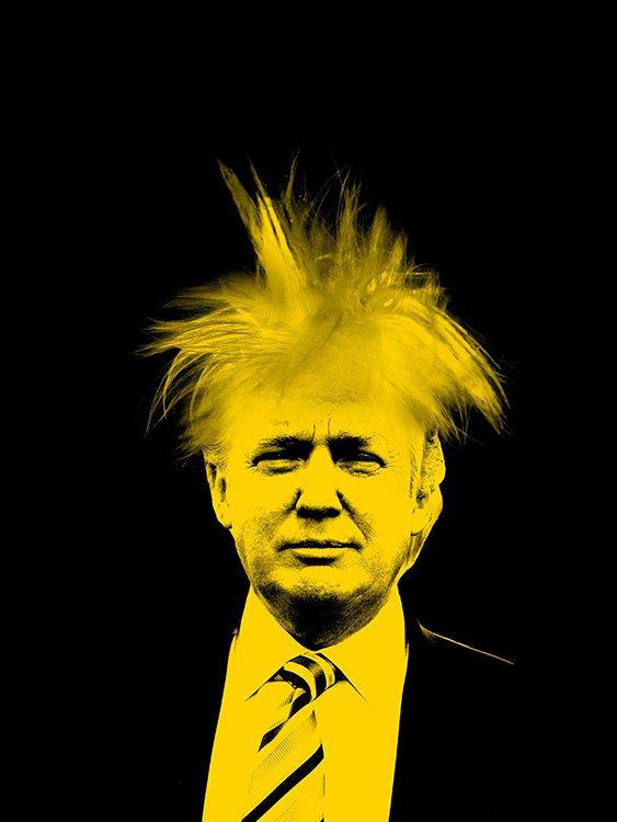 160725-ADC_AndayWarhol_Poster_Trump 2