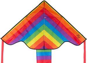Dragonfly regenboog vlieger