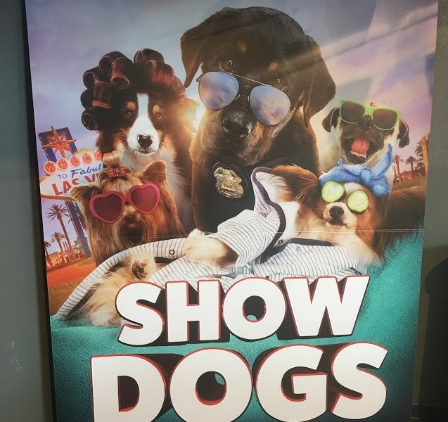 Show dogs review