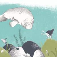 Meerwelt-Seekuh-Krabbenillustration-Algen
