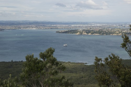 rangitoto-summit1