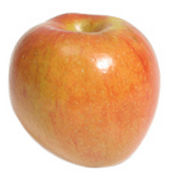 apple-sonya