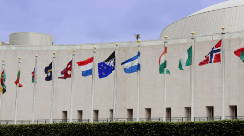 flag-Silver-fern-black-white-and-blue-UN-building