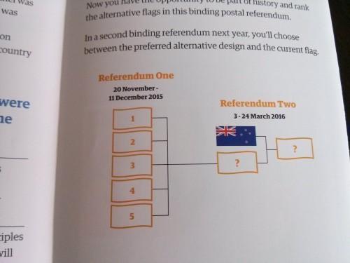 flag-vote2