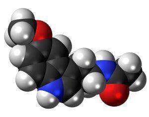 Melatonina: funciones y efectos en animales