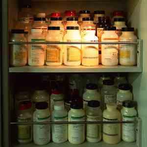 farmacocinética en animales