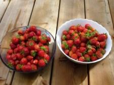 Erdbeer Rezept