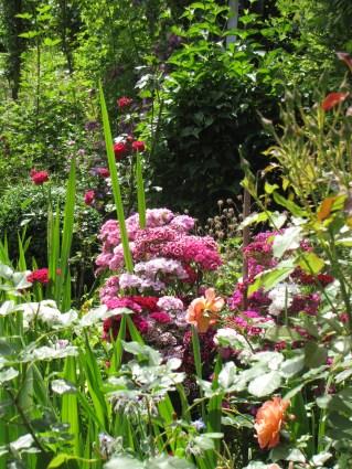 Sibylle Maag Gartendesign