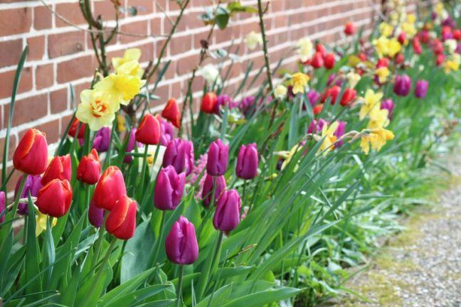 Blumenband vor dem Haus