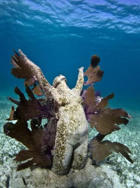 Onderwaterbeelden 14