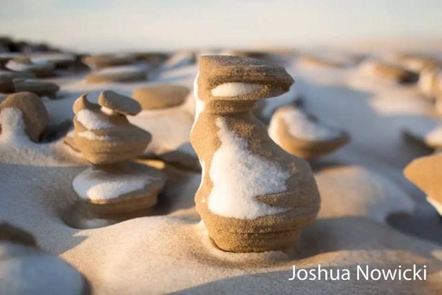 Joshua Nowicki 1