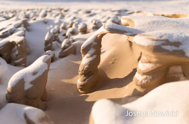 Joshua Nowicki 3