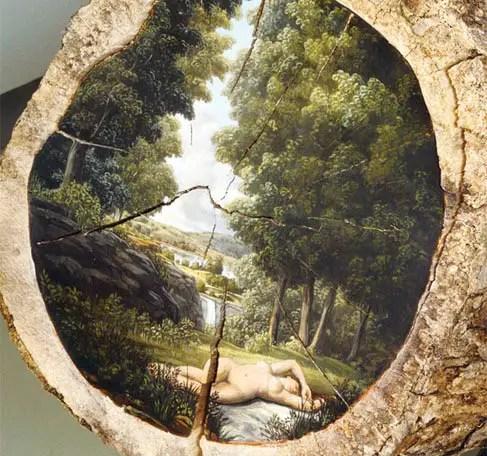 De natuur op een omgehakte boomstronk | Paradijsvogels Magazine