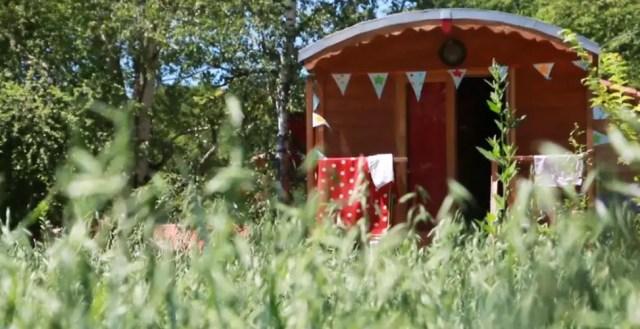 Tiny houses voor op vakantie: van pipowagens tot houten cabana's
