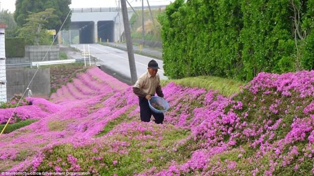 japanse man zaait bloemen4