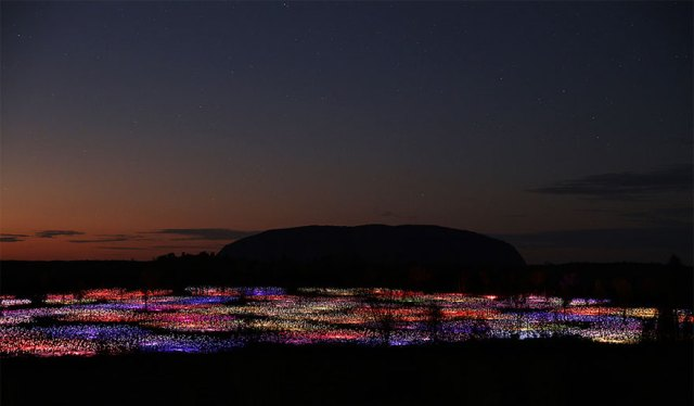 Bruce Munro - Field of light (5)