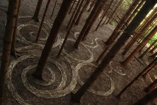 natuurkunst-verzameling9