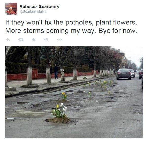 planting-flowers-in-potholes-7