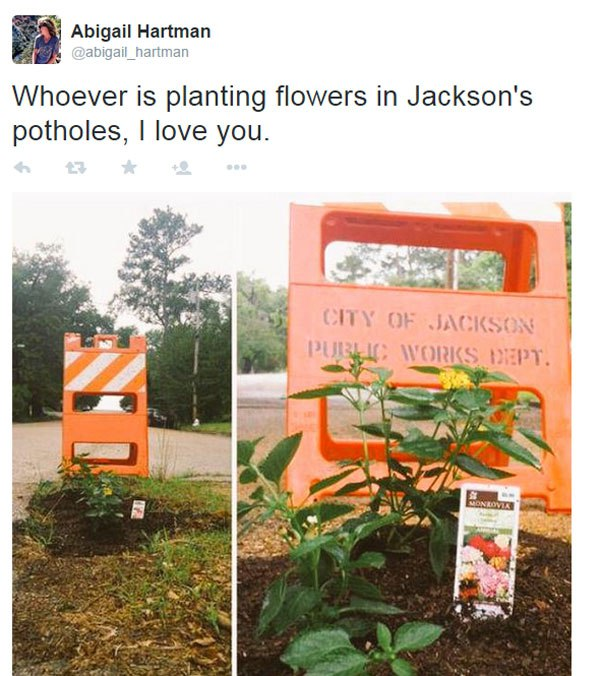planting-flowers-in-potholes-8