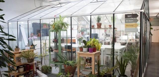 plantenhuis 1