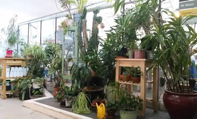 plantenhuis 2