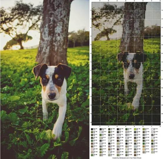 Hond borduur 1