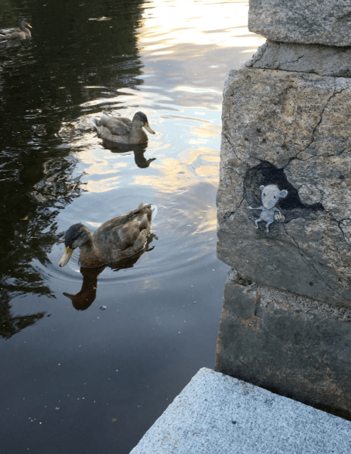 Muisje in muur met water en eend