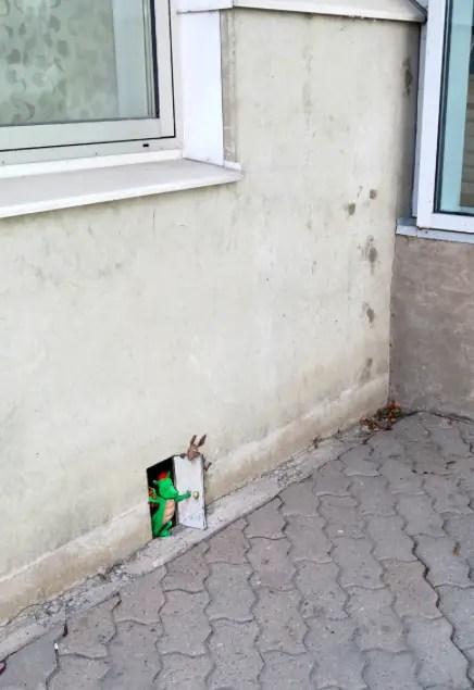 draakje in muur