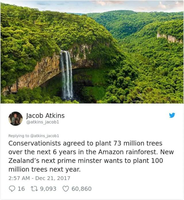 Jacob Atkins - 73 million trees