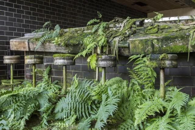 jonk-urban-exploring-natuur-verlaten-plekken-2