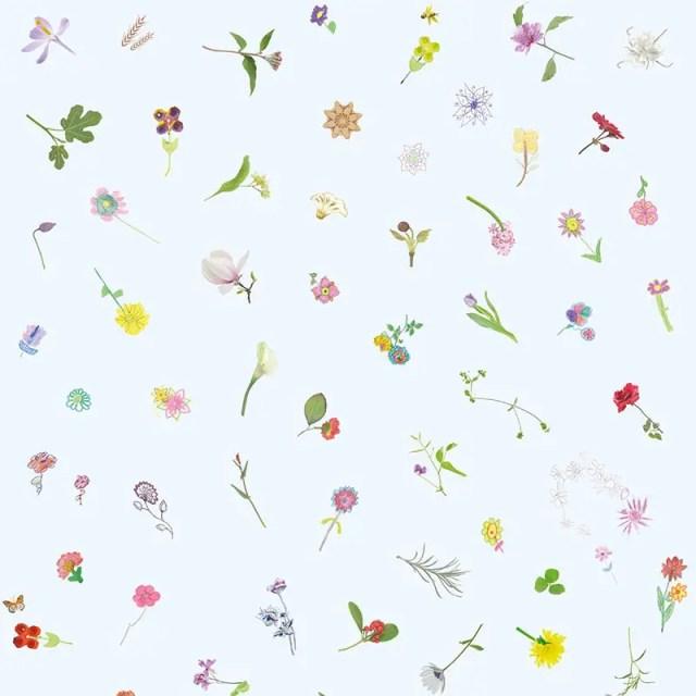 Schilderswijkse bloemetjes