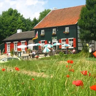 Kom tot rust in de groene schatkamer van het Zuid Limburgse Heuvelland