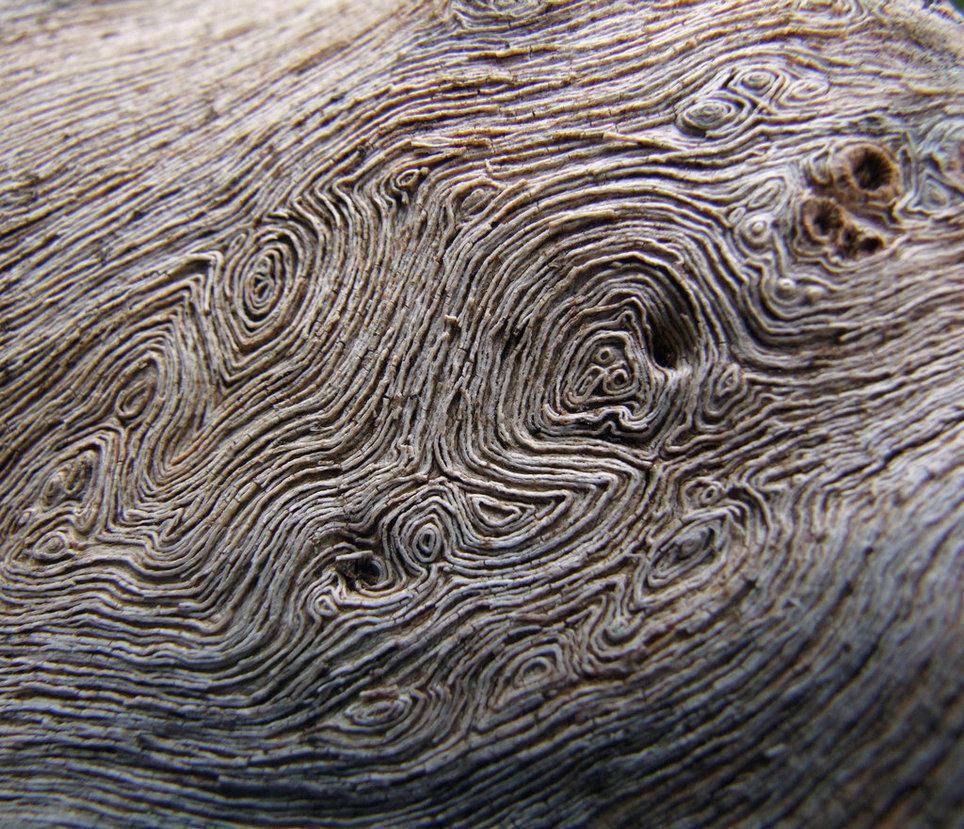 Tree-Stump-Pattern