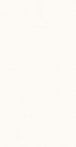Bellicita Bianco ciana  Biay  300x600  Wall tiles